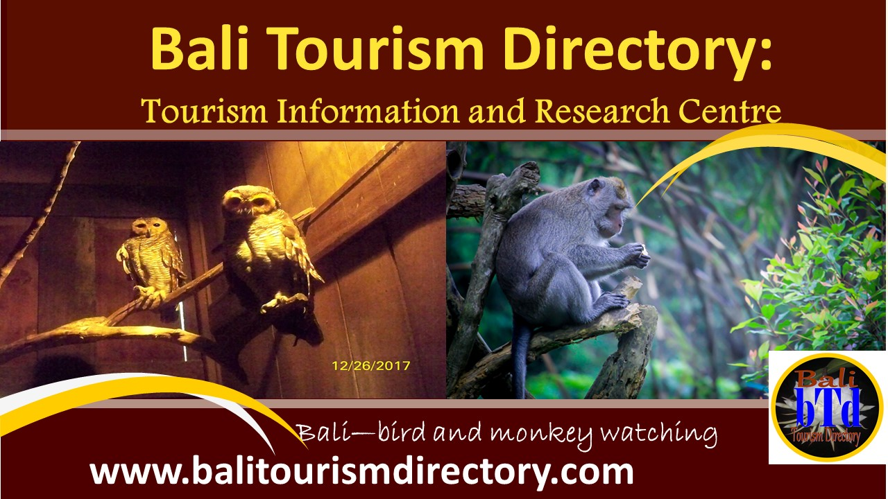 Bali Tourism Directory - bird and monkey watching